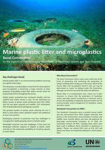 Marine plastic litter and microplastics